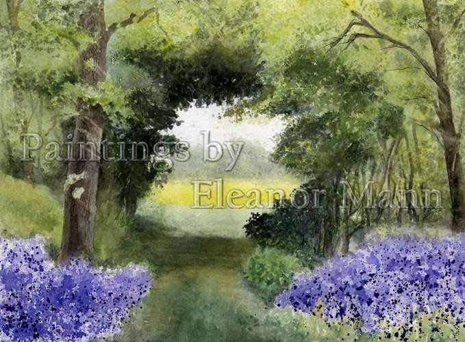 Bluebells at Dollery Wood, Bechamp St Paul, watercolour by Eleanor Mann