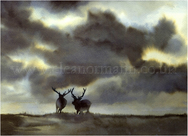 An original watercolour painting of deer rutting by Suffolk Artist, Eleanor Mann
