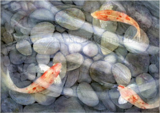 Koi with Pebbles  - an original watercolour painting by Eleanor Mann