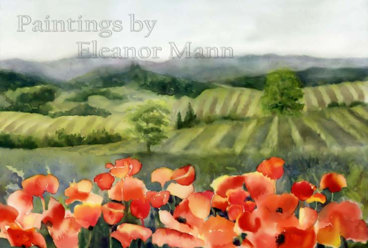 watercolour of poppies in France by Eleanor Mann