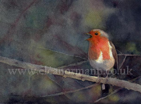 Original watercolour painting of a Robin red-breast sitting on a bramble byEnglish artist Eleanor Mann