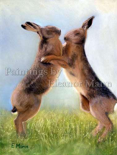 Boxing Hares - a pastel painting by Eleanor Mann